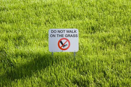 dont walk: Don\ Stock Photo
