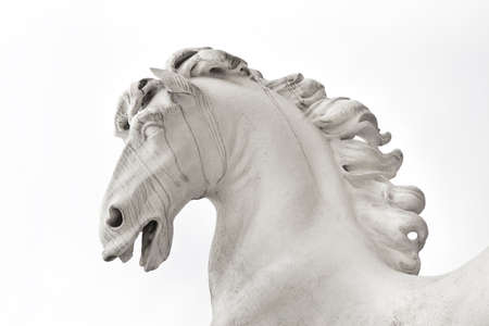 Horse head isolated on white background - Statue built in 1723 Approximately photo