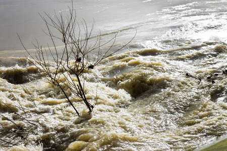 murky: Raging waters and murky. Flooding after several days of rain