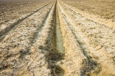 dimples: Dimples in a plowed field Stock Photo
