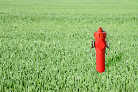 fireproof: Red hydrant in a green field - concept image