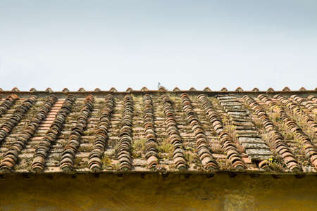 infiltration: Old abandoned roof (Tuscany - Italy)