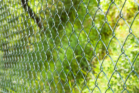 mains: Wire mesh in the woods Stock Photo