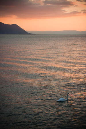 swiss culture: View of Geneva Lake at sunset - ( Montreux, Switzerland)
