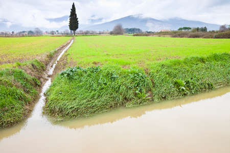 water pollution: Full water ditch in a field after torrential rain -  Image with copy space Stock Photo