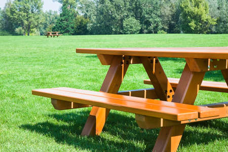 outdoor bench: Picnic table on a green meadow