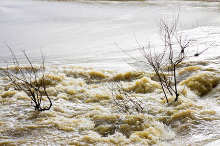 turbid: River in flood after several days of rain Stock Photo