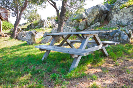 pinewood: Picnic table in a Tuscany pinewood (Italy)