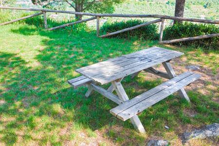 Picnic table in a Tuscany pinewood (Italy) photo