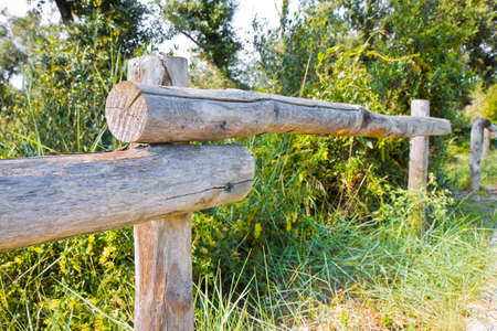 pasture fence: Detail of a wooden palisade focused on foreground