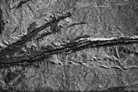 burnt wood: Burnt wood background - concept image