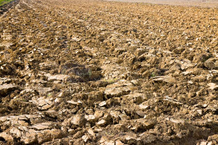 insertion: Detail of a plowed field in Tuscany countryside (Italy)- space for text insertion