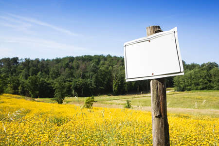 nformation: Blank sign indicating in the countryside with copy space Stock Photo