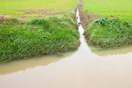 water feature: Full water ditch in a field after torrential rain