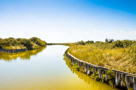brackish water: The Comacchio valleys  (Italy) are known worldwide for eel fishing - UNESCO protected area