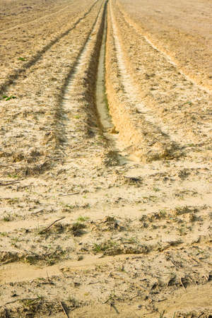 ditch: Ditch of rainwater collection in a plowed field Stock Photo