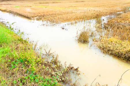 alluvial: Ditch in a field after torrential rain