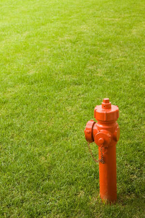 meadowland: Red fire hydrant isolated in a grass