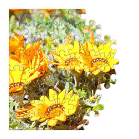 dismantle: Spring concept in puzzle shape