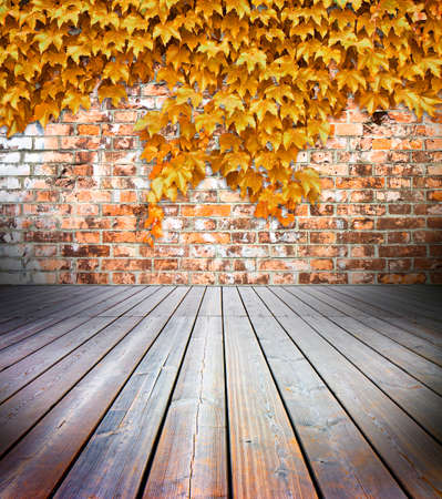 Hardwood floors with brick wall on background covered with golden ivy - toned image Stock Photo