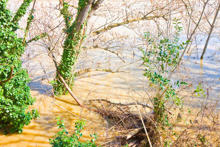 turbid: Flooding after torrential rain - concept image Stock Photo