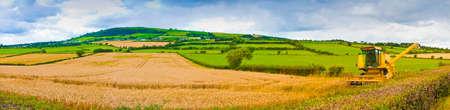 Paniramic Irish landscape with wheat field in the foreground and combine harvester (Ireland)