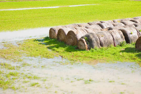 alluvial: Flooded fields with wet hay bales after torrential rain
