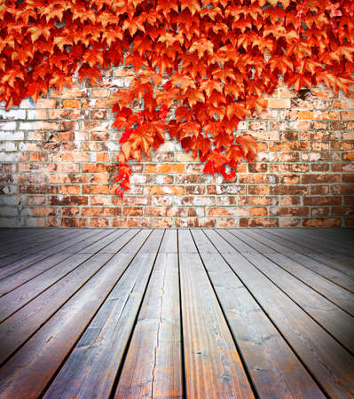 Hardwood floors with brick wall on background covered with red ivy