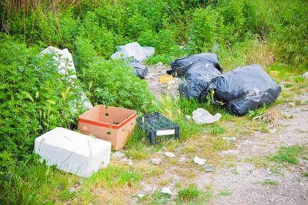 자연의 불법 투기. 쓰레기 봉지와 상자가 자연에 남았습니다.