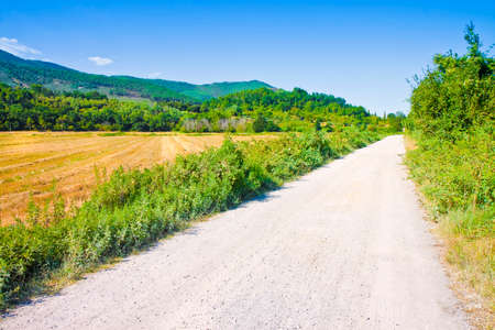 Tipical Tuscany country road called white road (Italy)
