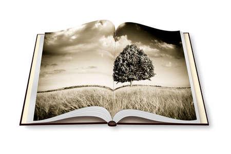 Isolated tree in a tuscany wheatfield - (Italy) - Opened photobook isolated on white background - toned image