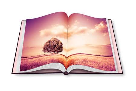 Isolated tree in a tuscany wheatfield - (Italy) - Opened photobook isolated on white background