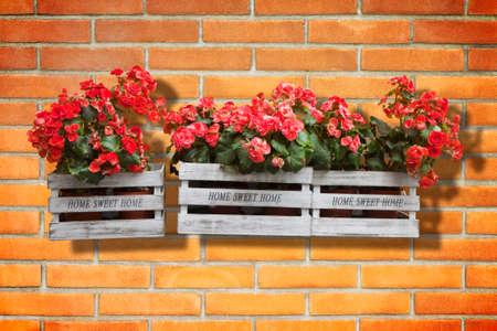 Wooden flowers boxes against an old brick wall - Home sweet home written on wooden box Banco de Imagens