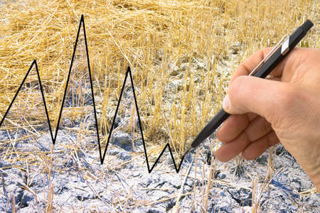 Hand write a graph in the background of a cultivated field - concept image