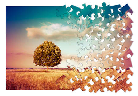 Isolated tree in a tuscany rural scene (Italy) - environmental conservation concept image in jigsaw puzzle shape
