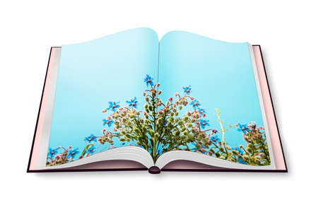 Spring concept - flowers on opened photobook Stock Photo