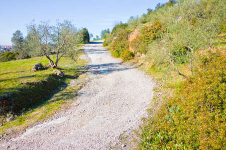 Country road in Tuscany countryside (Italy) - Mountain bike route Banco de Imagens