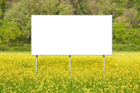 Blank commercial advertising billboard immersed in a rural scene against a yellow flowery field - image with copy space