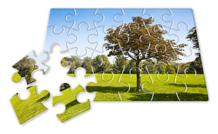 Isolated tree in a green meadow - environmental conservation concept image in jigsaw puzzle shape Stock Photo
