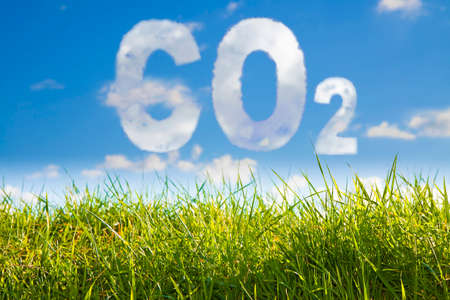 CO2 concept image against a green wild grass on sky background