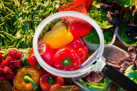 Fresh vegetables in an italian market - Concept image seen through a magnifying glass.