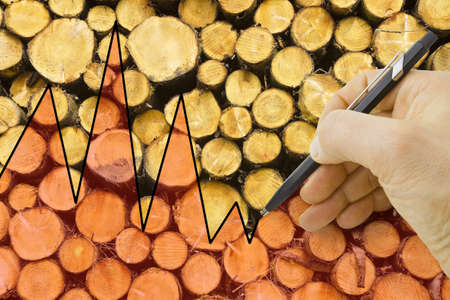 Hand drawing a graph about the timber market - concept image.