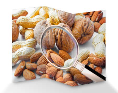 Quality control about dried fruit- HACCP (Hazard Analyses and Critical Control Points) concept image with peanuts, walnuts and almonds seen through a magnifying glass.