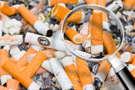 Focus on tobacco addiction - Cigarettes brought together in a cigarette case - image with copy space