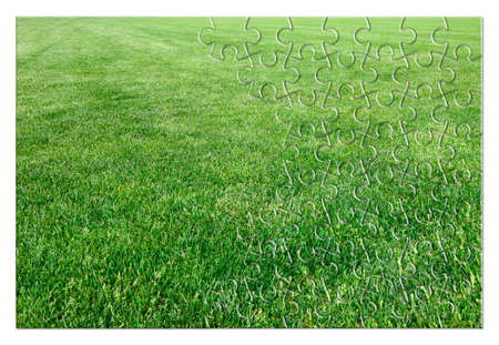 Beautiful green mowed lawn in jigsaw puzzle shape - concept image
