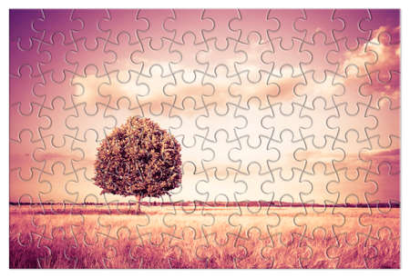 Isolated tree in a Tuscany wheatfield in shape of puzzle - (Tuscany - Italy - toned image)
