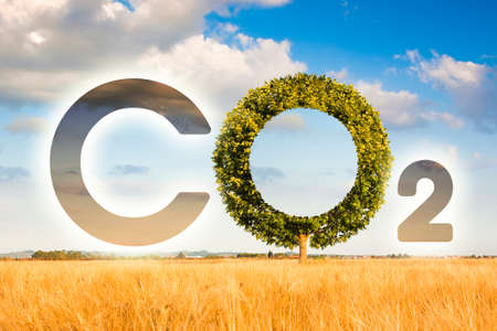 Reduction of the amount of CO2 emissions - concept image with CO2 icon text and tree shape in rural scene.