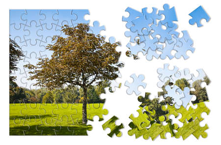 Isolated tree in a green meadow - environmental conservation concept image in jigsaw puzzle shape Standard-Bild