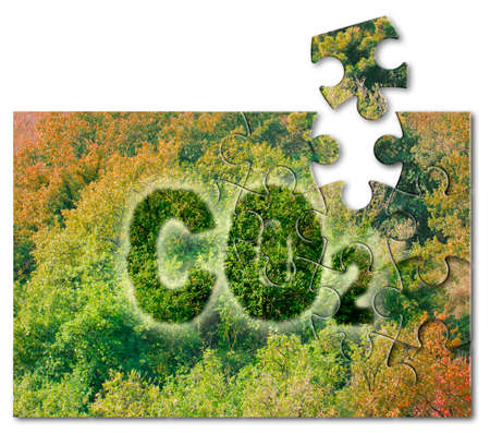 Planting more trees reduce the amount of CO2 - solution concept with CO2 text against woodland in jigsaw puzzle shape. Stock Photo