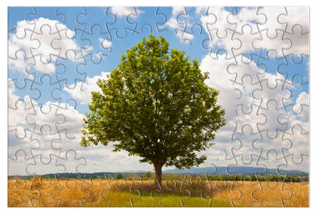 Isolated tree in a tuscany rural scene (Italy) - environmental conservation concept image in jigsaw puzzle shape.